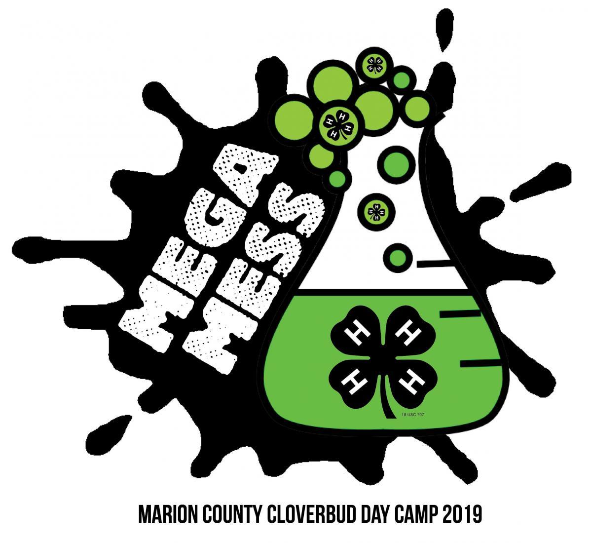 Mega Mess Cloverbud Day Camp