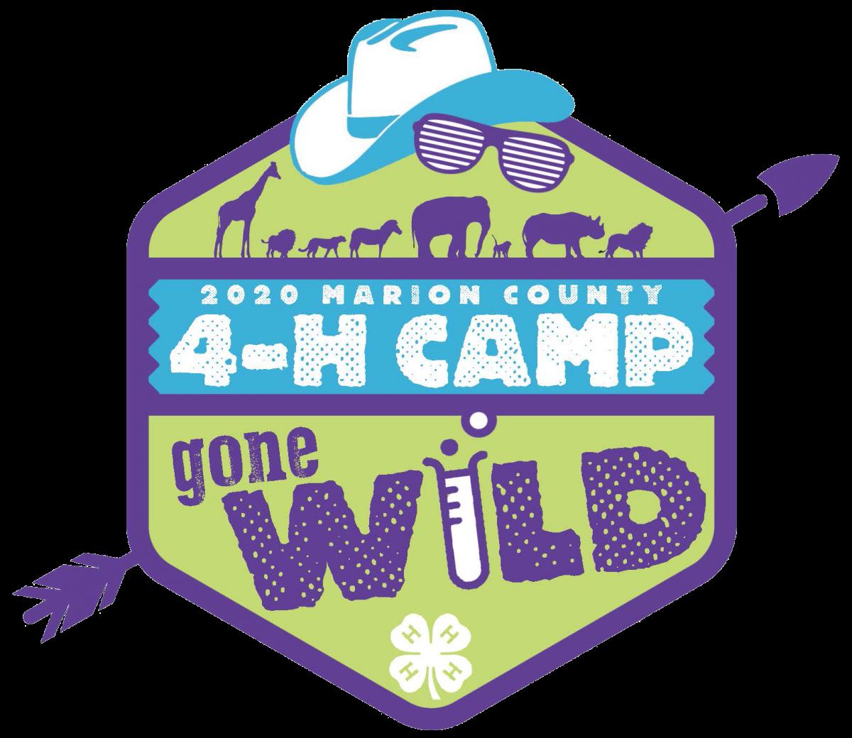 4-H camp logo 2020